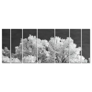 Snow Tree by Justin Strom Metal Wall Art