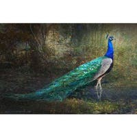 Marmont Hill 'Jungle Stream Peacock' by Chris Vest Painting Print on Canvas - Multi-color