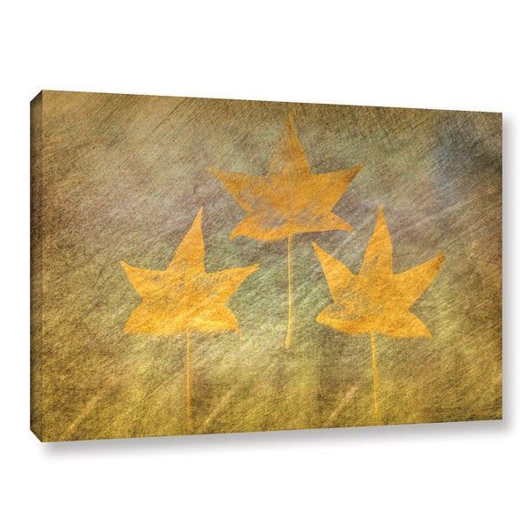 ArtWall Don Schwartz's 'Three Golden Leaves' Gallery Wrapped Canvas