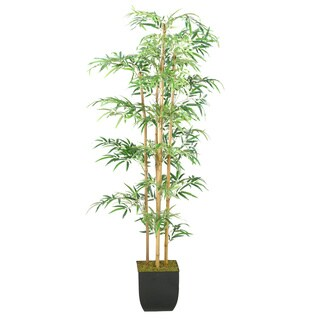 6-foot Bamboo Tree in Metal Planter