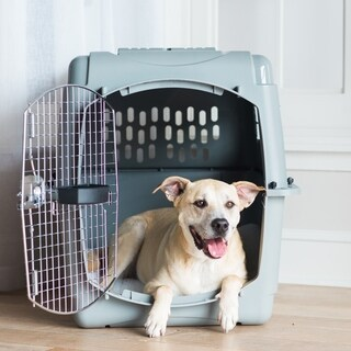 Petmate Sky Kennel (4 options available)