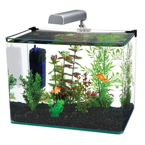 Penn Plax Radius Clear Desktop Aquarium Kit