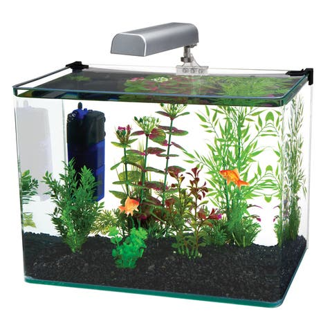 Penn Plax Radius Clear Desktop Aquarium Kit