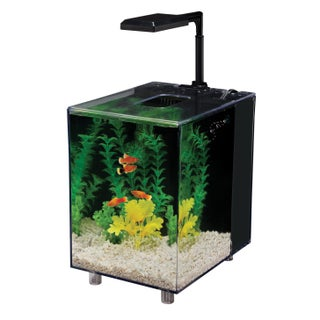Penn Plax Prism Desktop Aquarium Kit (2 Gallons)