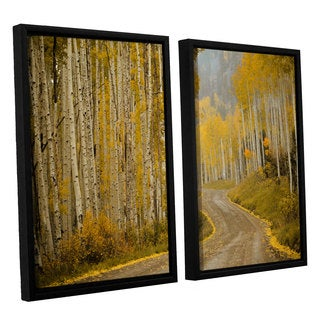 Amber Berninger's 'Telluride' CO' 2 Piece Floater Framed Canvas Set