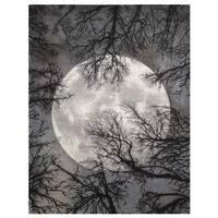Nourison Twilight Moon Rug - 5'6 x 8'