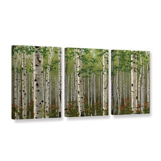 Julie Peterson's 'Summer Birch Forest' 3 Piece Gallery Wrapped Canvas Set