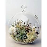 3 Decorative Clear Hanging Votive Candle Holder / Glass Orb Shaped Terrarium Vase, 4.5 X 4.5 Inch (p