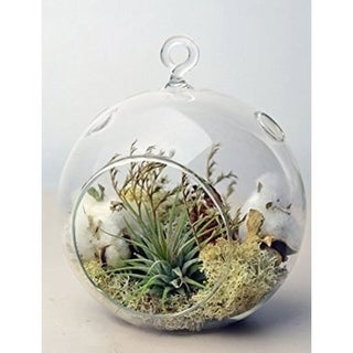 3 Decorative Clear Hanging Votive Candle Holder / Glass Orb Shaped Terrarium Vase, 4.5 X 4.5 Inch (p
