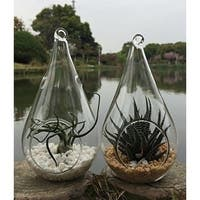 3 Decorative Clear Hanging Votive Candle Holder / Glass Tear Shaped Terrarium Vase, 4.5 X 4.5 Inch (