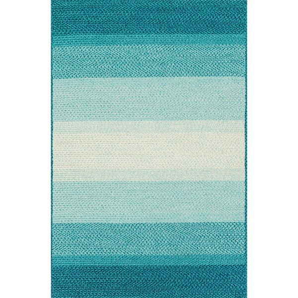Indoor/ Outdoor Braided Blue Rug - 7'9 x 9'9