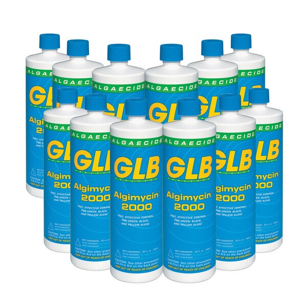 Swimming Pool Chemicals Product : Glb swimming pool algimycin algaecide free shipping