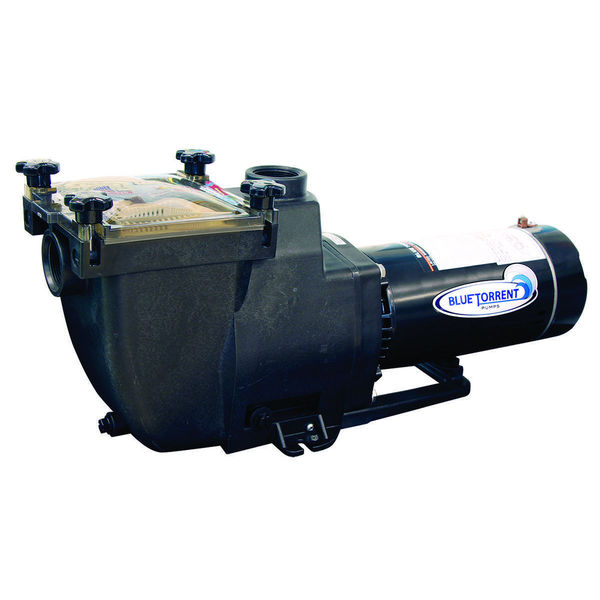 shop blue torrent typhoon in ground swimming pool pump free shipping today