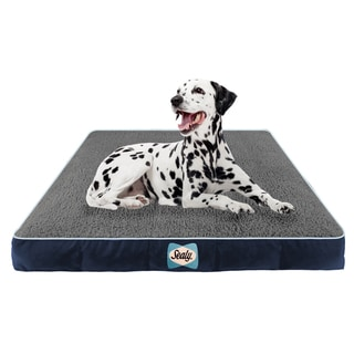 Sealy Cozy Comfy Memory/ Orthopedic Foam Pet Bed
