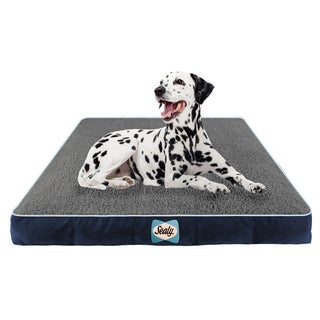 Sealy Cozy Comfy Memory/ Orthopedic Foam Pet Bed