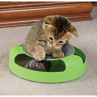 Kitten Toy with Rotating Mouse