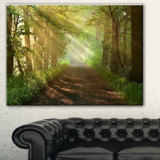 Designart 'Suns Peeks into Forest' Landscape Photo Canvas Print