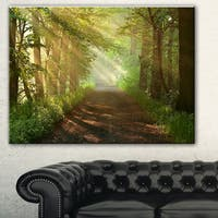 Designart 'Suns Peeks into Forest' Landscape Photo Canvas Print - Green