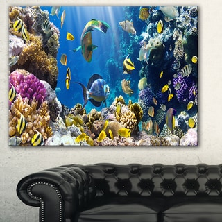 Designart 'Fish in Coral Reef' Seascape Photography Canvas Print