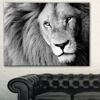 Designart 'Lion Head in Grey' Animal Digital Art Canvas Print