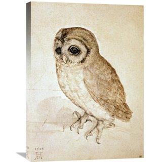 Global Gallery, Albrecht Durer 'Screech Owl' Stretched Canvas Artwork
