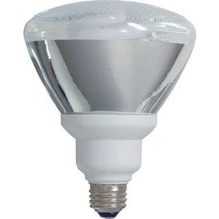 GE Lighting 21739 26 Watt Indoor & Outdoor Floodlight 2-count