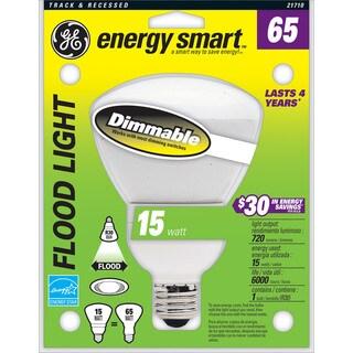 GE Lighting 21710 15 Watt Indoor Floodlight