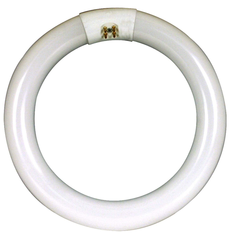 FEIT Electric FC8T9/CW Compact Fluorescent Circular Light...