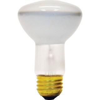 GE Lighting 18279 45 Watt Soft White Indoor Flood Light Bulb 2-count