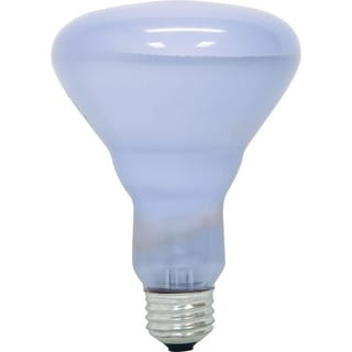 GE Lighting 87904 65 Watt BR40 Reveal Flood Light Bulb