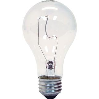 GE Lighting 78795 29 Watt A19 Crystal Clear Light Bulb 2-count