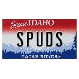 Idaho License Plate 12x 6 Printed on Metal Wall Decor