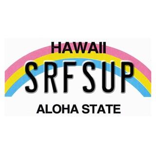 Hawaii License Plate 12x 6 Printed on Metal Wall Decor