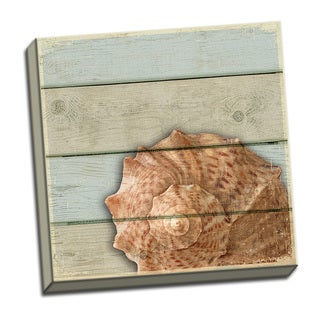 Conch Shell 12x12 Coastal Shell Art Printed on Framed Ready to Hang Canvas
