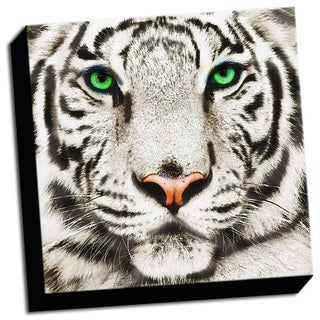 Tiger Close Up Printed on Ready to Hang Framed Stretched Canvas