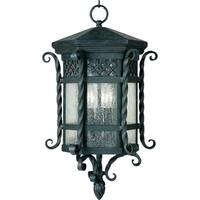 Maxim Scottsdale-Outdoor Hanging Lantern