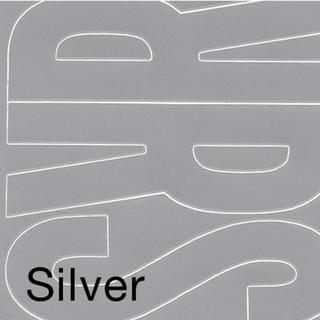 Permanent Adhesive Vinyl Letters 6  94/Pkg - Silver