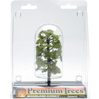 Premium Basswood Tree 4  1/Pkg -