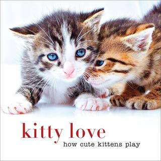 Sterling Publishing - Kitty Love How Cute Kittens Play