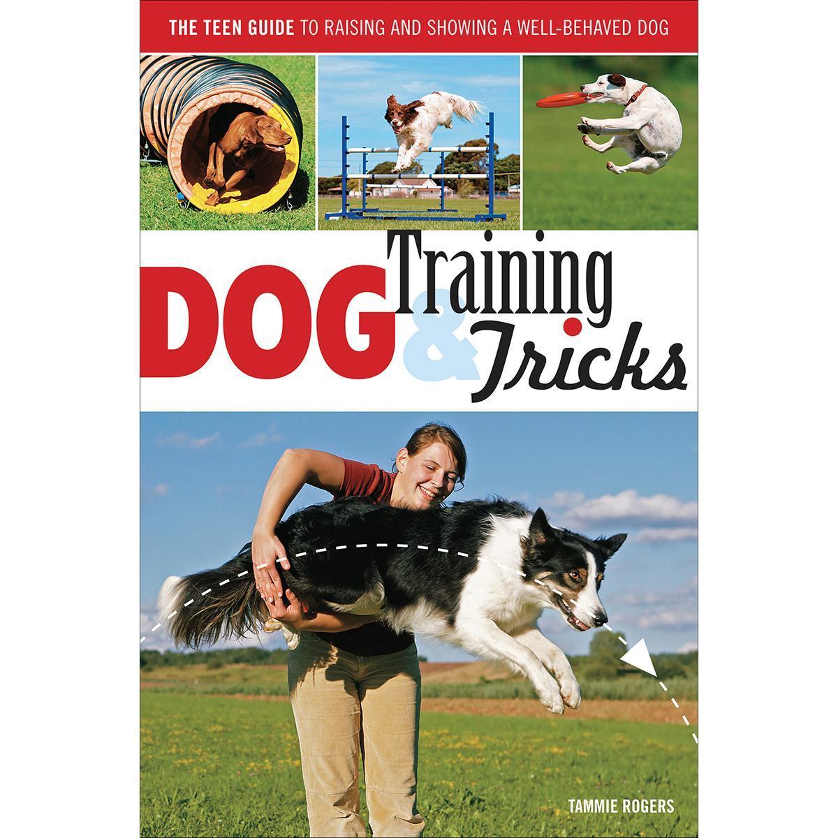 Quasar Voyageur Press Books - Dog Training & Tricks, Grey