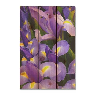 French Iris 16x24 Indoor/ Outdoor Full Color Cedar Wall Art