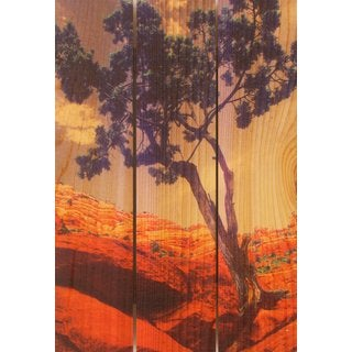 Desert Tree 16x24 Indoor/ Outdoor Full Color Cedar Wall Art