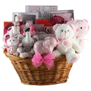 Great Arrivals Grand Welcome! Baby Girl Gift Basket
