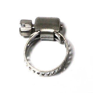 Taze Miniature Worm Gear Hose Clamp/ Worm Drive with 5/16-inch Band Width (Pack of 10)