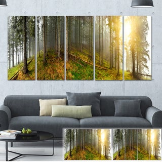 Designart 'Early Morning Sun in Forest' Landscape Photo Canvas Print