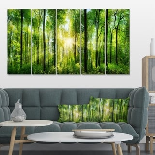 Designart 'Forest with Rays of Sun Panorama' Landscape Canvas Print