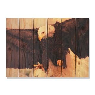 Bald Eagle 33x24 Indoor/ Outdoor Full Color Cedar Wall Art