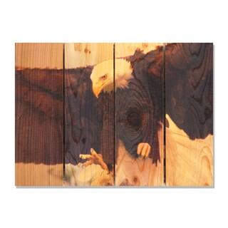 Bald Eagle 22.5x16 Indoor/ Outdoor Full Color Cedar Wall Art