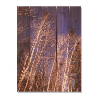 Winter Aspens -28x36 Indoor/Outdoor Full Color Cedar Wall Art