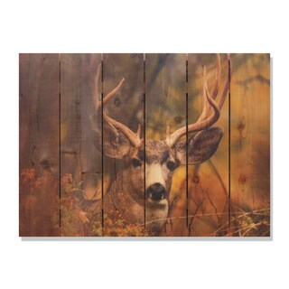 Perfect Look -33x24 Indoor/Outdoor Full Color Cedar Wall Art